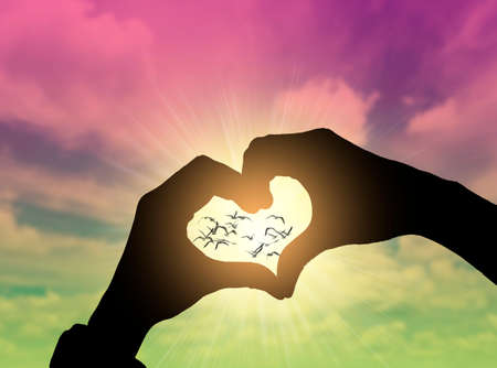 Photo for Heart shape hand gesture with blue sky - Royalty Free Image