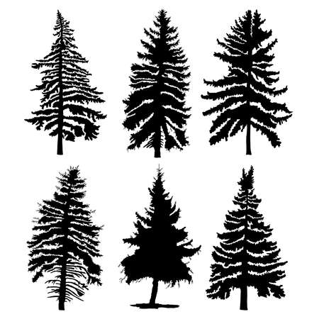 Illustration pour Fir trees set isolated on white background illustration. Collection of black coniferous trees silhouettes. Hand drawing. - image libre de droit