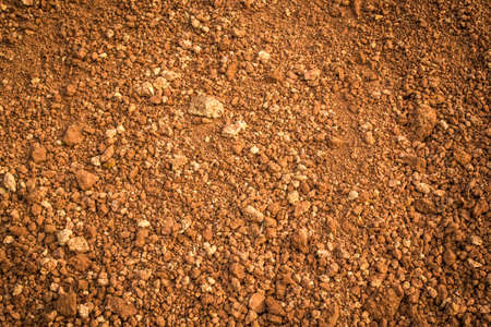 Photo for laterite soil - Royalty Free Image