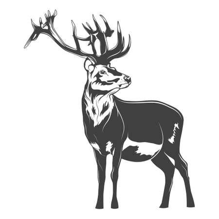 Ilustración de Monochrome deer on a white background. Vector   illustration. - Imagen libre de derechos
