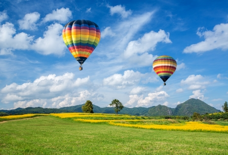 Photo for Hot air balloon over the yellow flower field with mountain and blue sky background - Royalty Free Image