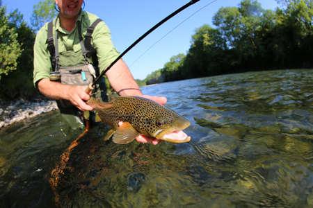 Photo pour Closeup of fly-fisherman holding brown truit in river - image libre de droit