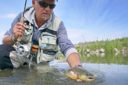 Photo for Fly fisherman in river of Montana catching brown trout - Royalty Free Image
