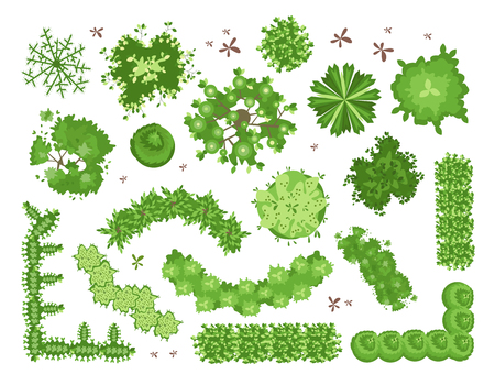 Illustration pour Set of different green trees, shrubs, hedges. Top view for landscape design projects. Vector illustration, isolated on white background. - image libre de droit