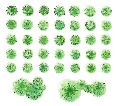 Ilustración de Various green trees, bushes and shrubs, top view for landscape design plan. Vector illustration, isolated on white background. - Imagen libre de derechos