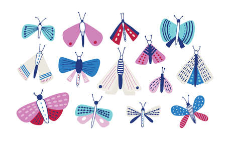 Collection of moths of different types and sizes isolated on white background. Set of nocturnal flying insects with beautiful wings. Bundle of pretty butterflies. Flat colorful vector illustration.