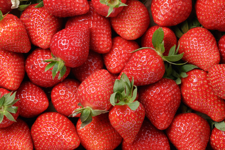 Photo pour background from freshly harvested strawberries, directly above - image libre de droit