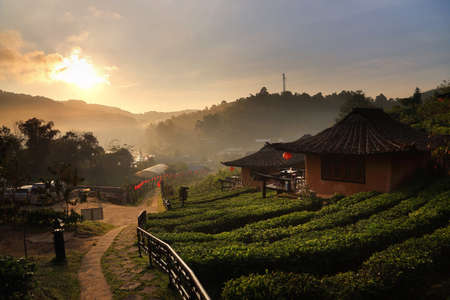 Photo pour Beautiful scenery during sunrise at Chinese village among Tea Plantation at Ban Rak Thai , Mae Hong Son in Thailand.This is very popular for photographers and tourists. - image libre de droit