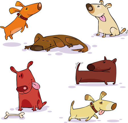 Vector set of funny dog