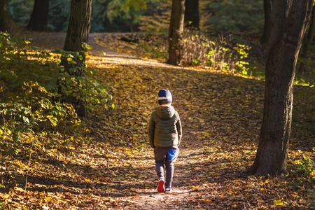 Photo for Little toddler boy walking alone through autumn forest. Path in life. Bullying in school concept. Scare and fright. Back view. - Royalty Free Image