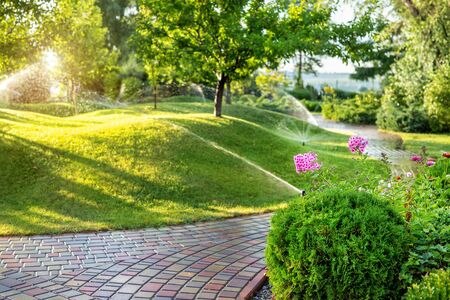 Foto de Automatic garden watering system with different sprinklers installed under turf. Landscape design with lawn hills and fruit garden irrigated with smart autonomous sprayers at sunset evening time. - Imagen libre de derechos