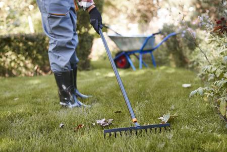 Foto de Unrecognizable man raking leaves in the garden - Imagen libre de derechos