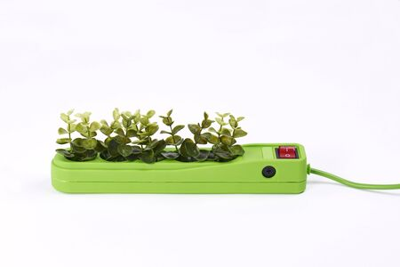 Photo for Electric socket with plants on white background - Royalty Free Image