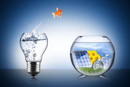 Foto de fish energy change concept - Imagen libre de derechos