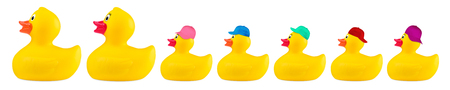 Photo for yellow classic rubber bath duck toy cool family concept row isolated on white background - Royalty Free Image