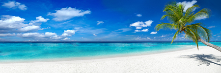 Photo for tropical paradise beach with white sand and coco palms travel tourism wide panorama background concept - Royalty Free Image