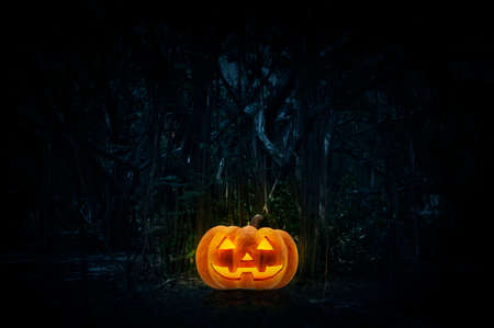 Photo pour Jack O Lantern pumpkin on grass over spooky forest at night time, Horror background, Halloween concept - image libre de droit