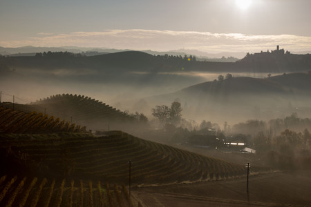 Photo pour View on the Langhe in the municipality of La Morra, Patrimony of the Humanity - image libre de droit