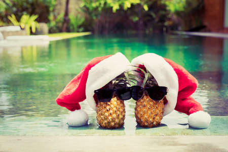 Photo for Pineapple couple in Santa hats hanging by the pool - Royalty Free Image