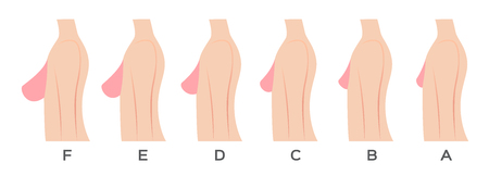 Ilustración de Breast size and type vector - Imagen libre de derechos