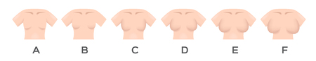 Illustrazione per Breast size and type vector - Immagini Royalty Free