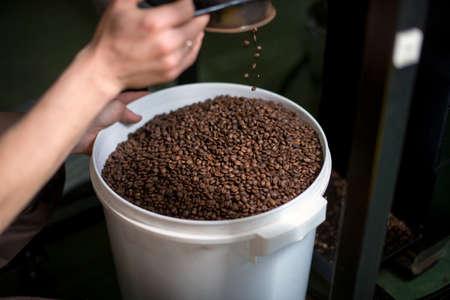 Foto de Roasted coffee is poured into a bucket. - Imagen libre de derechos
