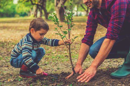 Photo pour Let me help you! Little boy helping his father to plant the tree while working together in the garden - image libre de droit