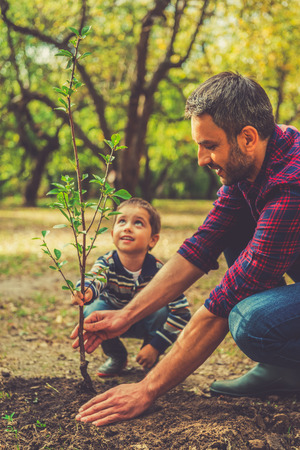 Foto de We are doing everything together. Happy young man planting a tree while his little son helping him - Imagen libre de derechos
