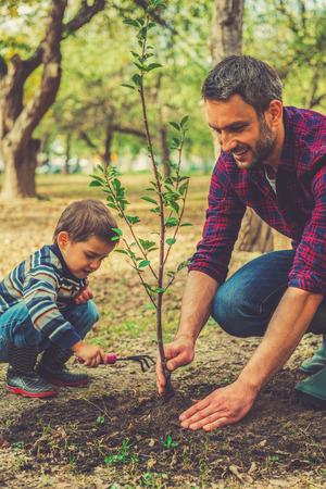 Foto de Good day for gardening. Happy young man planting a tree while his little son helping him - Imagen libre de derechos