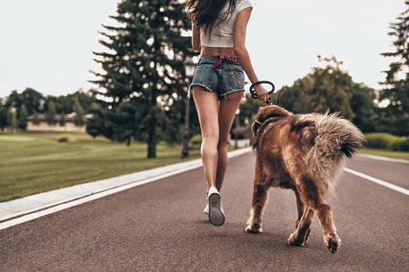 Photo for They both love jogging. Close-up rear view of young woman running with her dog through the park while spending time outdoors - Royalty Free Image