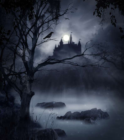 Photo pour The castle in a swamp in a dark night with the moon illuminating the scene - image libre de droit