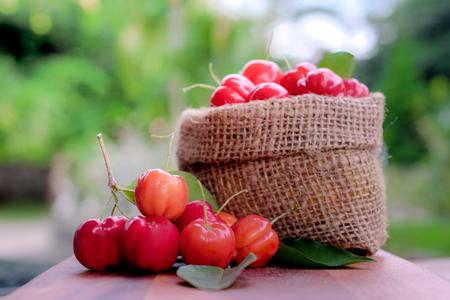 Photo pour Acerola fruit close up on background - image libre de droit