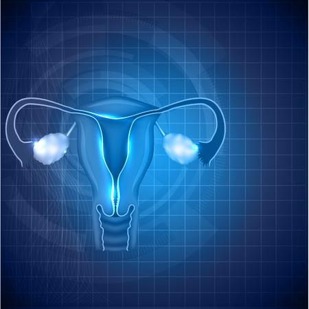 Ilustración de Female reproductive system background. Normal female uterus and ovaries illustration. - Imagen libre de derechos
