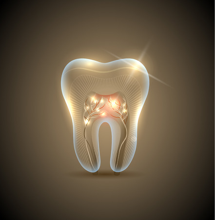 Illustration pour Beautiful golden transparent tooth with roots illustration. Healthy teeth care symbol. - image libre de droit