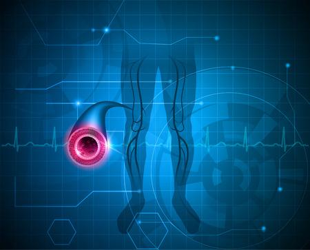 Illustration pour Healthy leg artery on a abstract blue background - image libre de droit