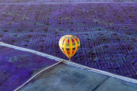 Foto de Yellow hot air ballon over a field of lavender in Temecula, California. - Imagen libre de derechos