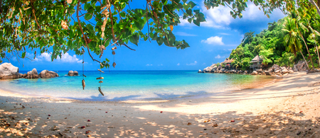Photo pour Idyllic tropical beach, palm, white sand and crystal clear water. Amazing beach. Landscape for background or wallpaper. Koh Tao, Thailand - image libre de droit
