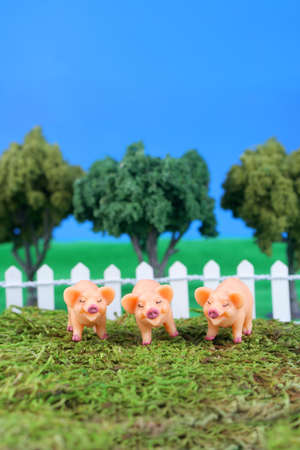 three little pigs on grass with fence, trees, and blue sky