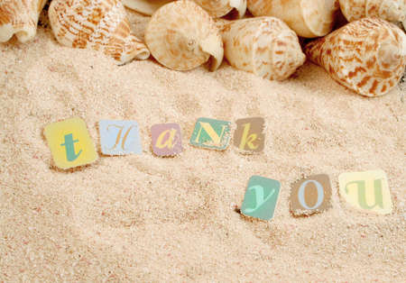 Photo for thank you on sand with shells in the background, great for postcard or greeting - Royalty Free Image