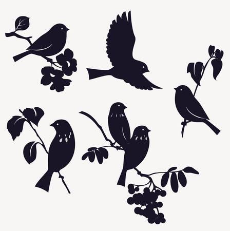 Illustration pour Set of birds - image libre de droit