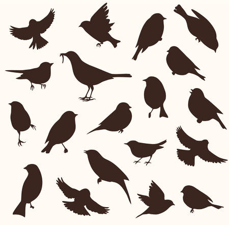 Illustration pour Vector set of bird silhouette. Sitting and flying birds - image libre de droit