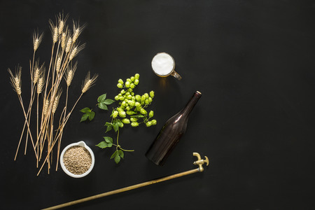 Photo pour green fresh hop on the black background, with beer and barley - image libre de droit