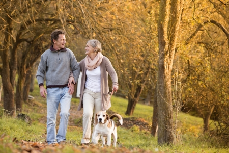 Photo for Senior couple walking their beagle dog in autumn countryside - Royalty Free Image