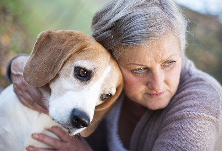 Photo pour Senior woman hugs her beagle dog in countryside - image libre de droit
