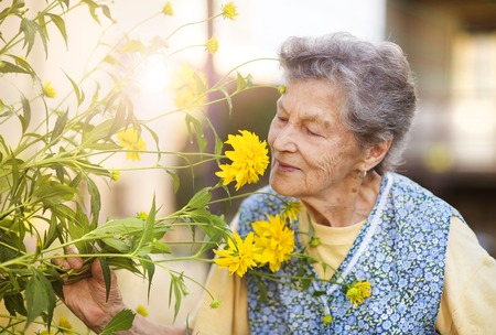 Foto de Portrait of senior woman in apron with yellow flower in the sunny garden - Imagen libre de derechos