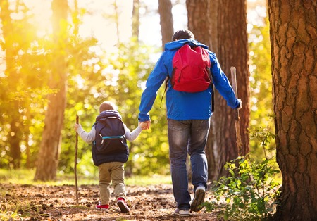 Photo for Father and son in forest - Royalty Free Image