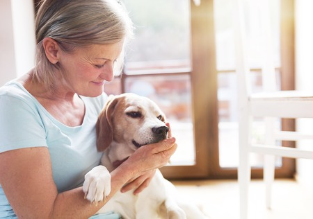 Foto de Senior woman with her dog inside of her house. - Imagen libre de derechos