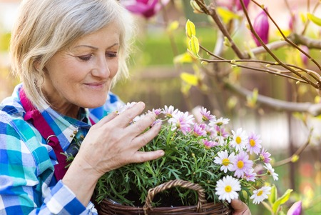 Foto de Beautiful senior woman planting flowers in her garden - Imagen libre de derechos
