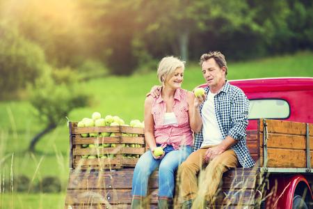 Foto de Senior couple sitting in a truck after harvesting apples - Imagen libre de derechos