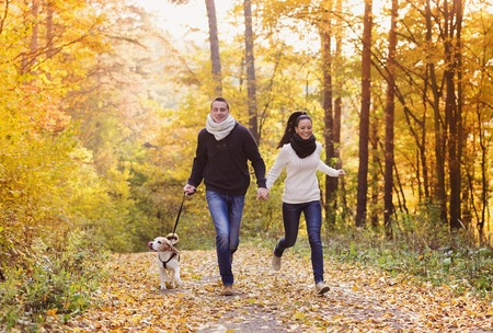 Foto per Beautiful young couple with dog in autumn forest - Immagine Royalty Free